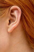 שחזור אוזניים